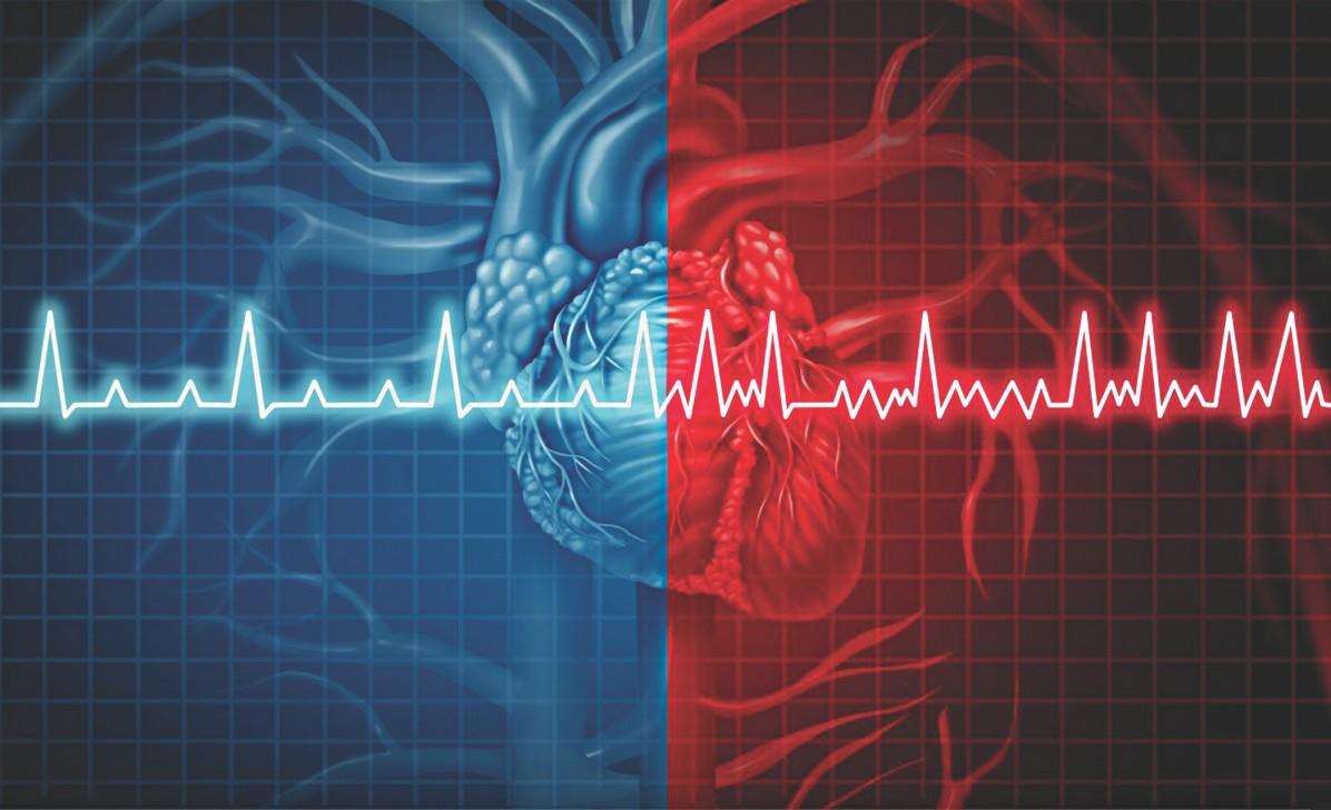 tips-menjaga-jantung-sehat